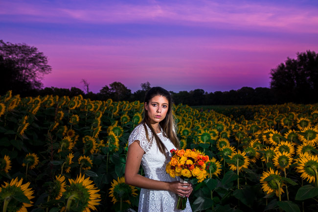 Grinter-Farms-Sunflowers-Model-8