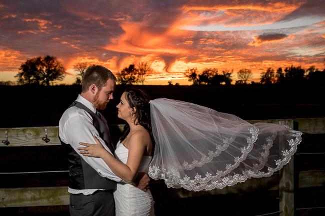 Pine-Dell-Horse-Farm-Wedding-140