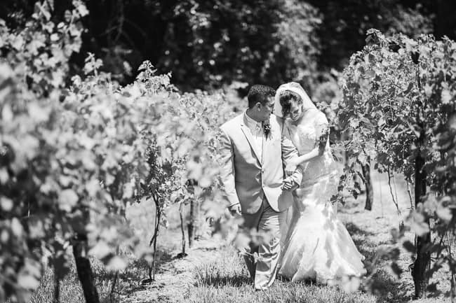 Mallinson-Vineyard-Wedding-98