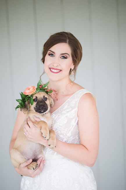 The-Farm-At-Woodend-Springs-Unleashed-Pet-Rescue-Wedding-29