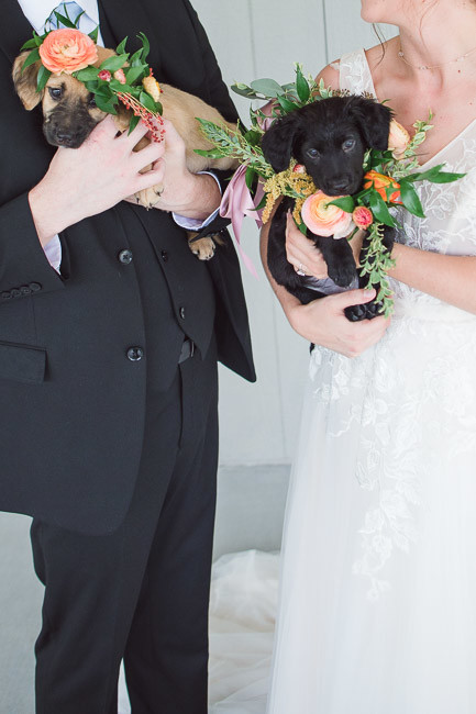 The-Farm-At-Woodend-Springs-Unleashed-Pet-Rescue-Wedding-32