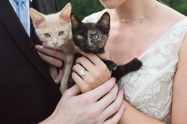 The-Farm-At-Woodend-Springs-Unleashed-Pet-Rescue-Wedding-45