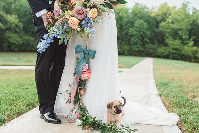 The-Farm-At-Woodend-Springs-Unleashed-Pet-Rescue-Wedding-63
