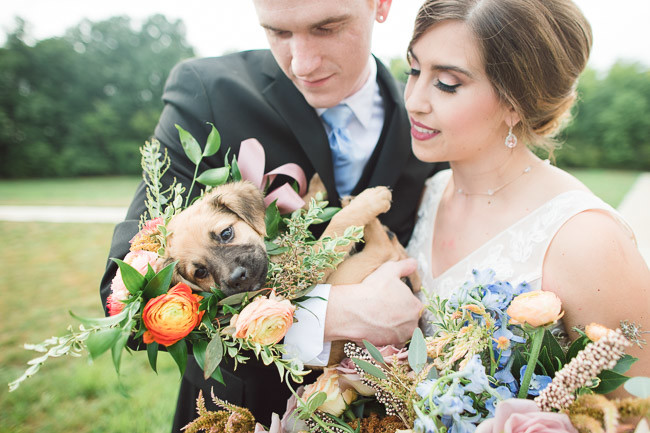 The-Farm-At-Woodend-Springs-Unleashed-Pet-Rescue-Wedding-67