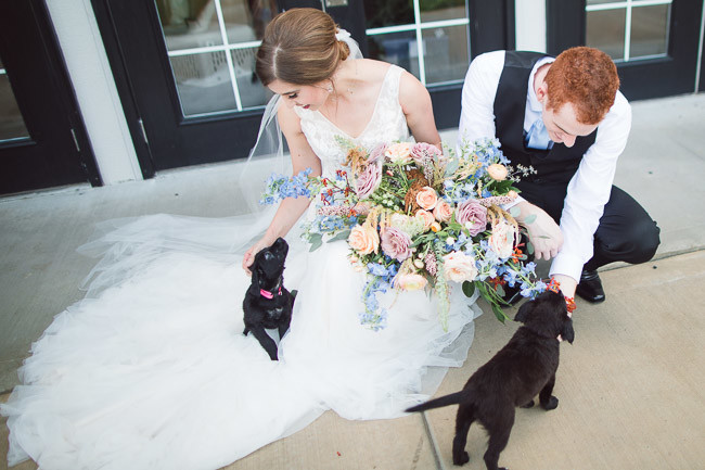 The-Farm-At-Woodend-Springs-Unleashed-Pet-Rescue-Wedding-85
