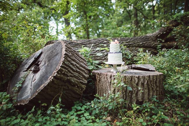 Enchanted-Acres-Harrisonville-Missouri-Wedding-4