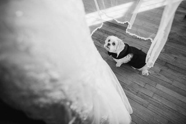 The-Journey-Home-Wedding-Dearborn-Missouri-Wedding-25