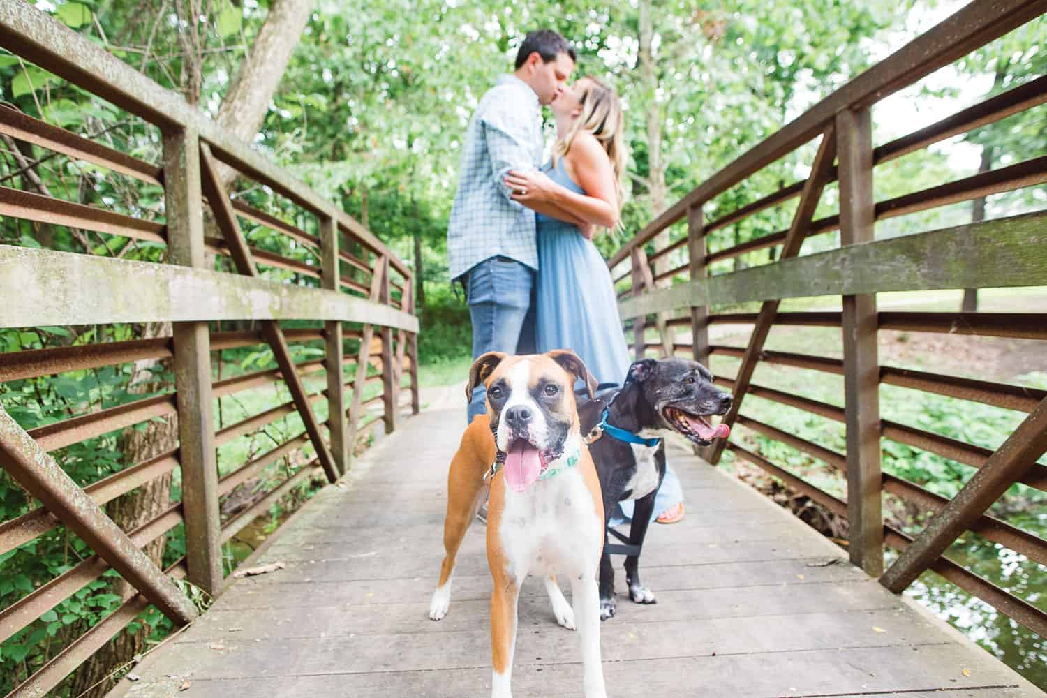 Antioch Park Engagement Session with dogs