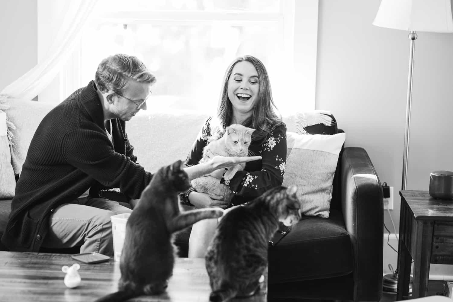 Kansas City engagement session with cats